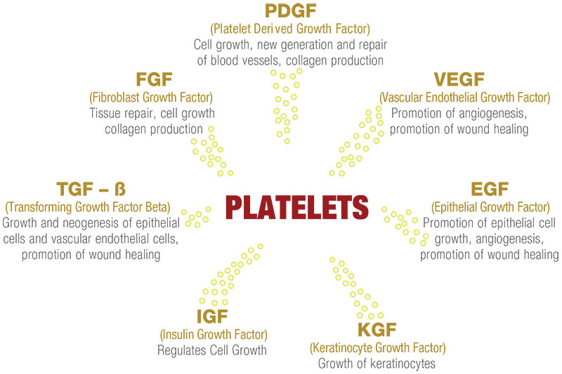 platelets-graphic